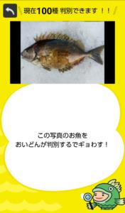 フィッシュ1−16