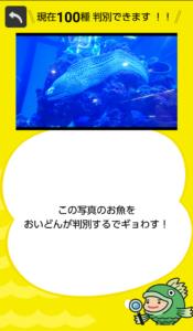 フィッシュ1−14