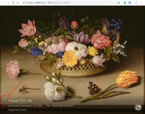 Google Arts & Culture 更新