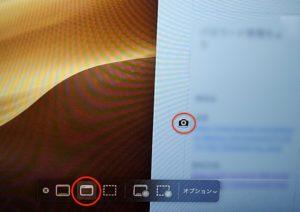 スクリーンショットと収録のオプション ウィンドウ