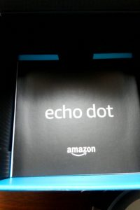 echo dot 説明書
