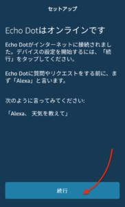 echo dot オンライン