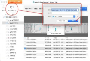 EaseUS Data Recovery Wizard for Mac インポート