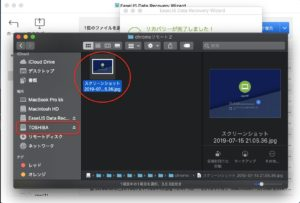 EaseUS Data Recovery Wizard 画像保存