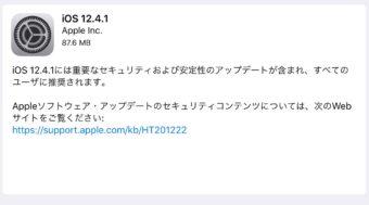 iPadをiOS12.4.1にアップデートする