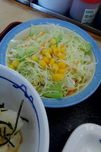 松屋 湯豆腐変更 サラダ