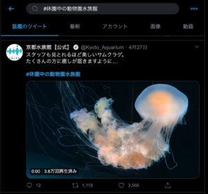 Twitter 京都水族館