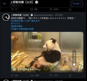 Twitter 上野公園パンダ