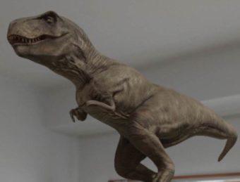Google検索で!ARで目の前に動く恐竜を表示する