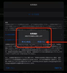 iPadOS14アップデート 同意する