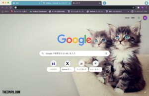 Google Chromeのテーマ 猫