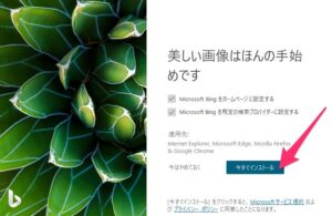Microsoft Bing Wallpaper インストール開始